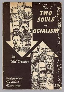 Cover of The Two Souls of Socialism
